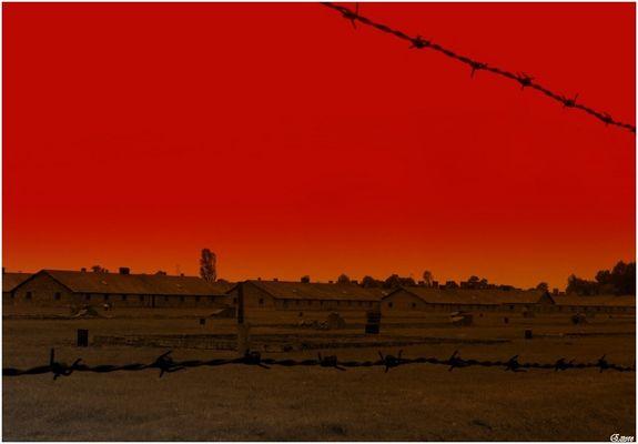 Auschwitz-Birkenau 1940-1945......