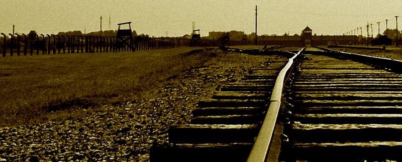 Auschwitz/ Birkenau 2007