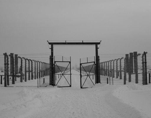 Auschwitz Birkenau (7) - Symmetrie