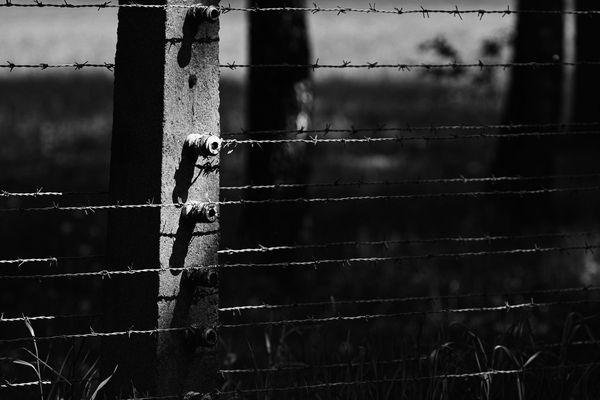 Auschwitz - Birkenau XIII