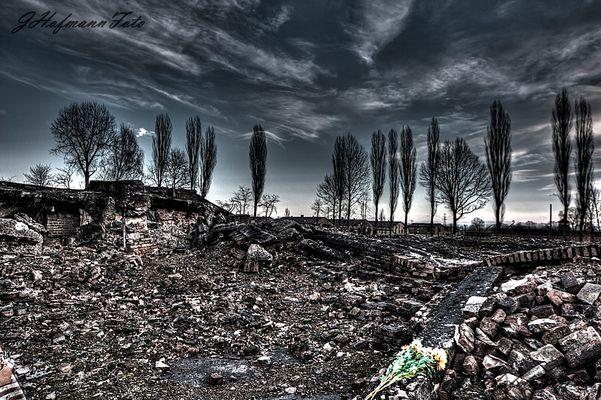 Auschwitz II (Birkenau)...