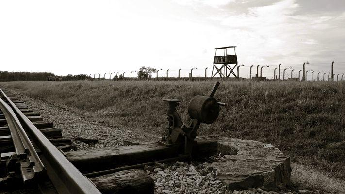 Auschwitz II-Birkenau  -  i binari