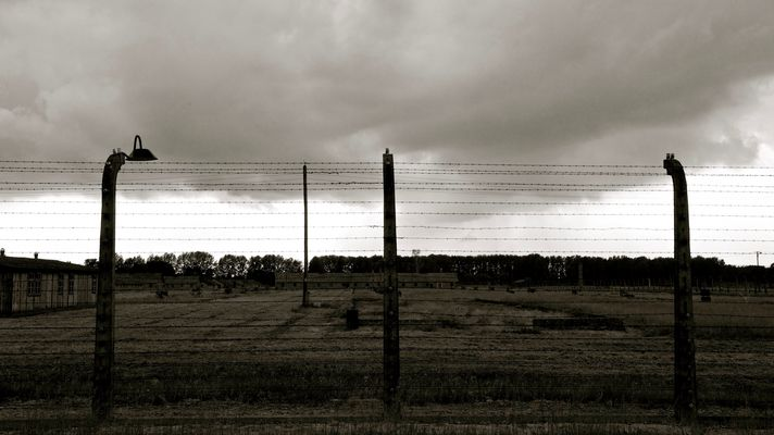 Auschwitz II-Birkenau  -  reticolato