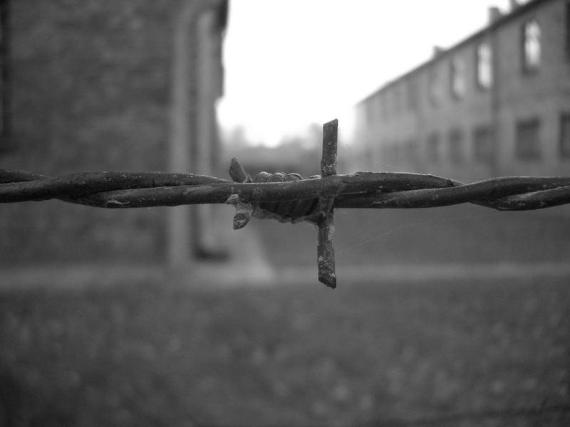 Auschwitz, November 2005
