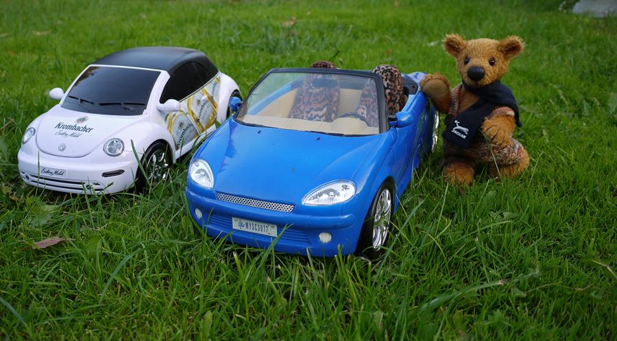 Ausfahrt ins Grüne...welchen Wagen nehme ich nur ???