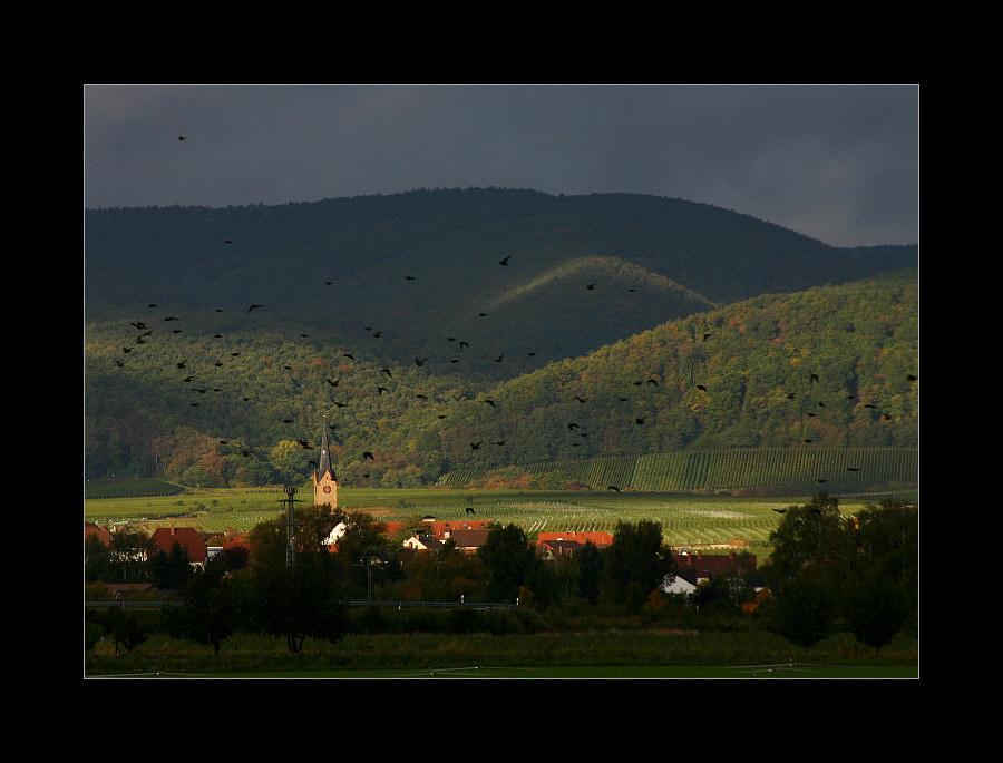 Ausflug in die Pfalz #1 (26)
