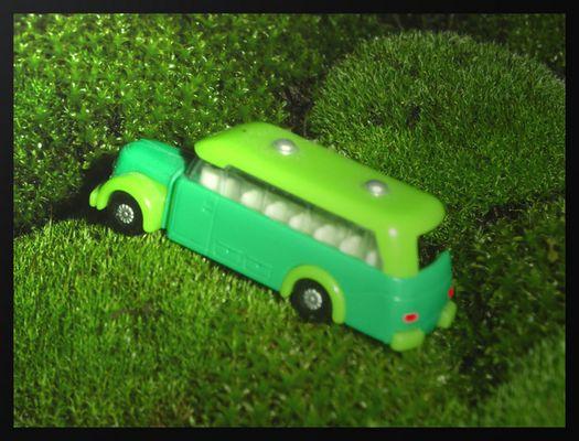 Ausflug ins Grüne