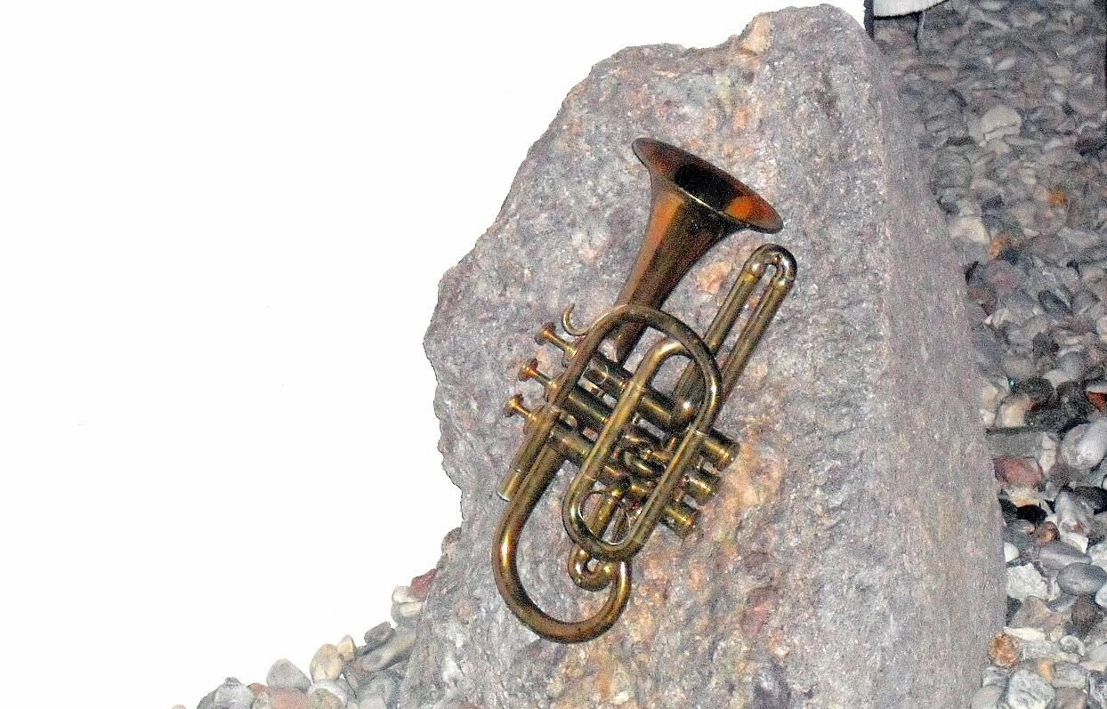 ausgediente Hörner
