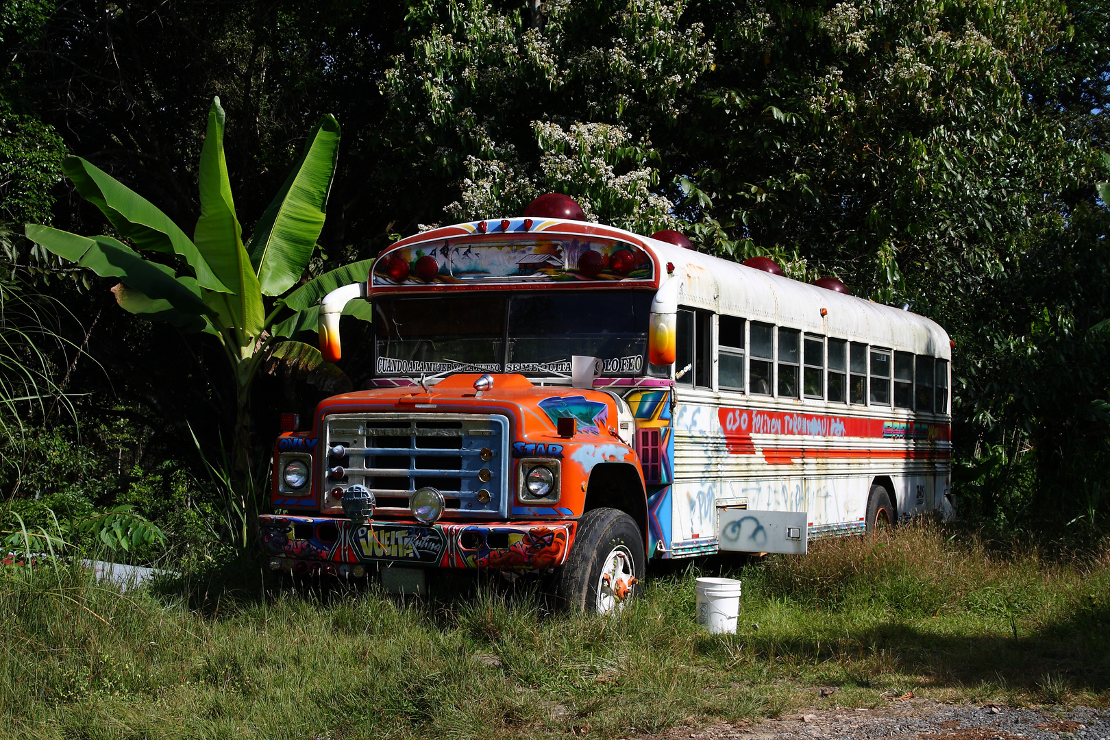 Ausgedienter Bus in Panama