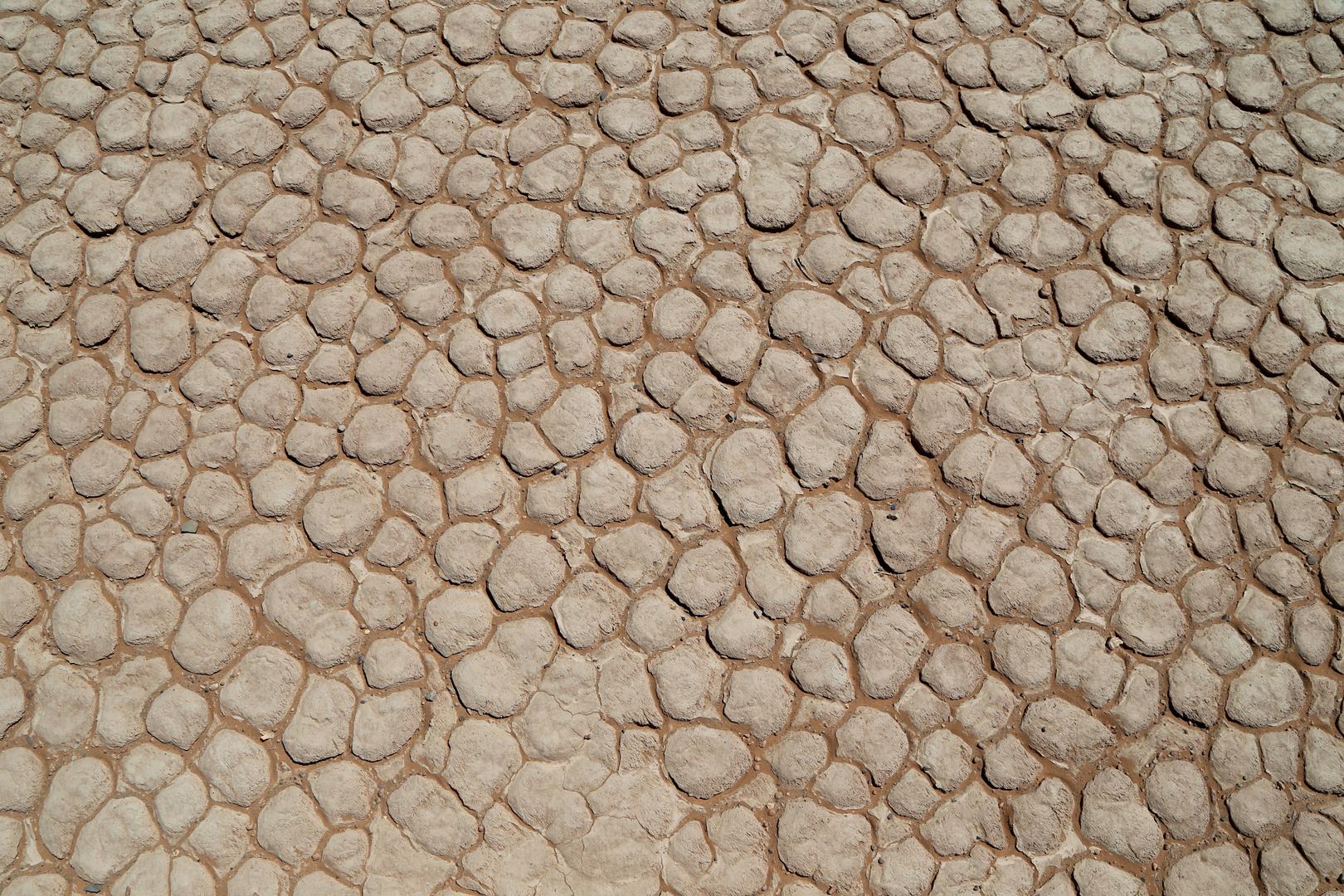 Ausgetrockneter Seeboden, Wüste bei Merzouga, Marokko