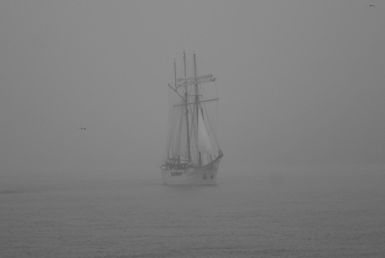 Ausschnitt vom Geisterschiff in Schwarz/weiss