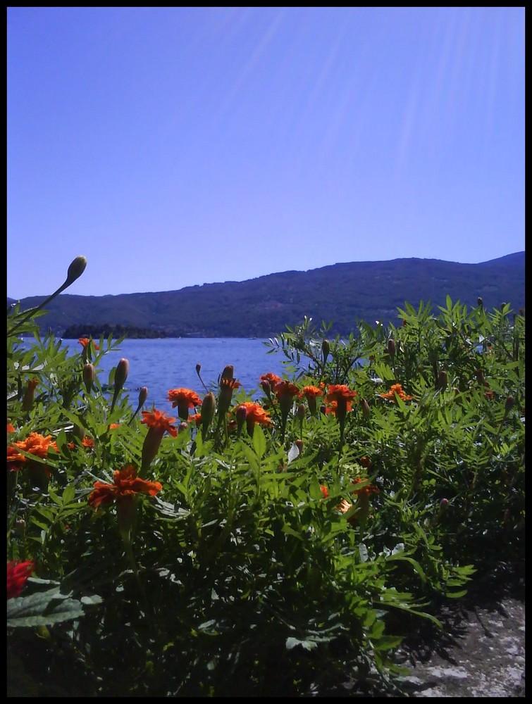 Aussicht auf den Lago Maggiore