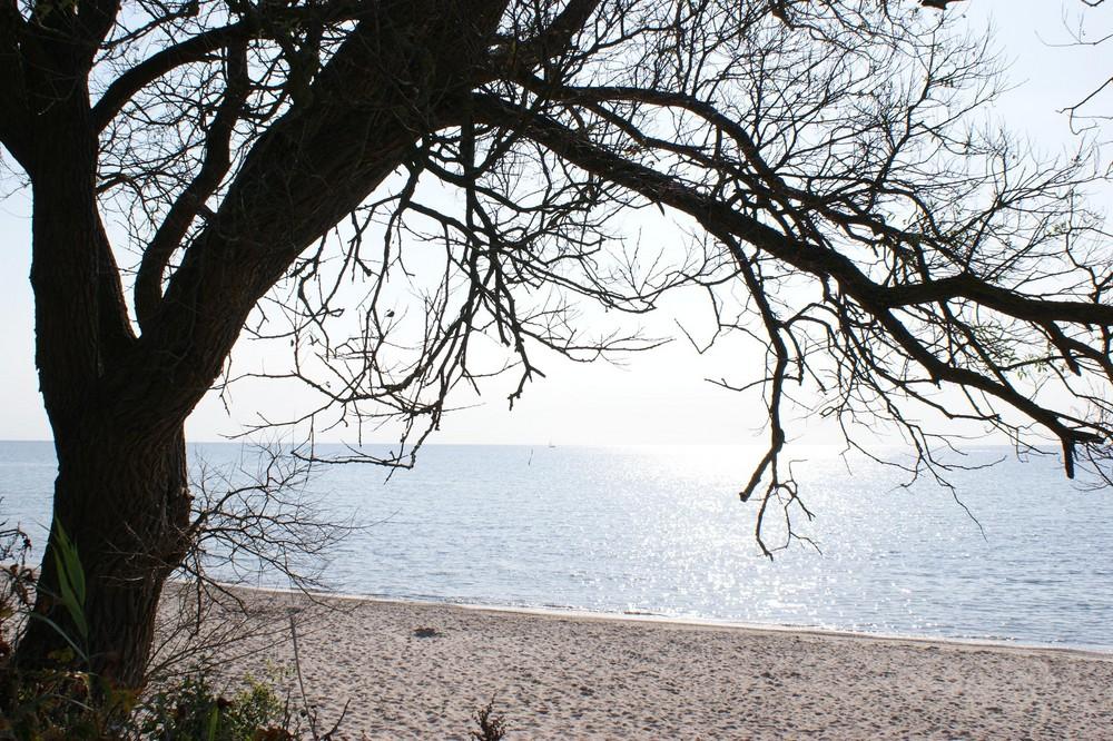 Aussicht auf Wasser und Strand