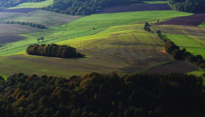 Aussicht Burg Lichtenberg (Kusel)
