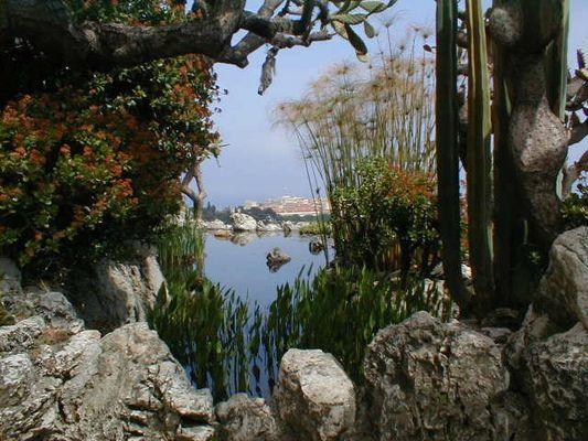 Aussicht - Monaco - botanischer Garten