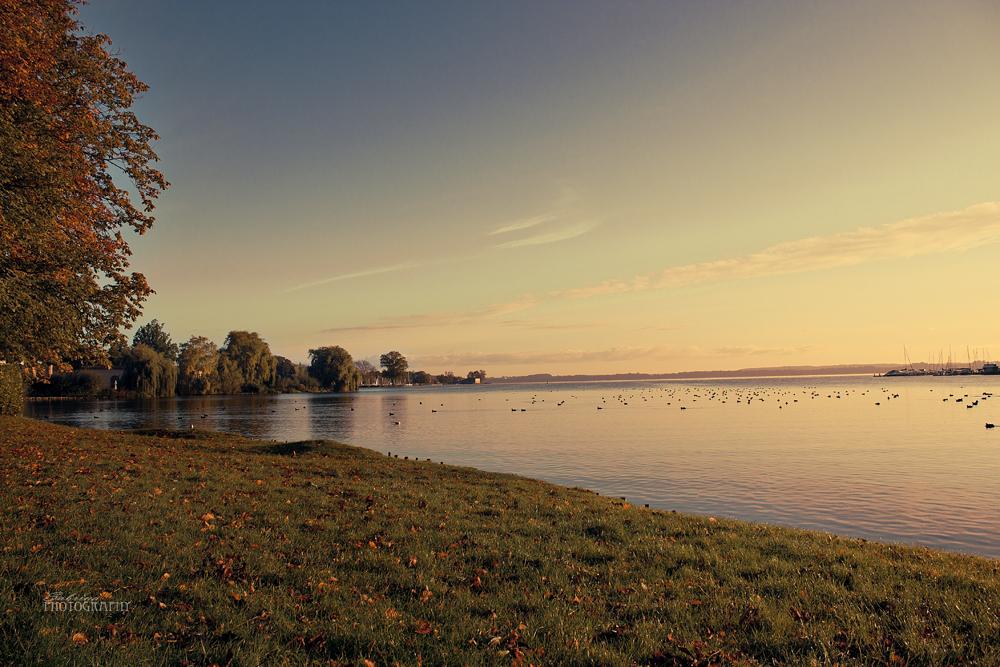 Aussicht Schweriner See am frühen Morgen