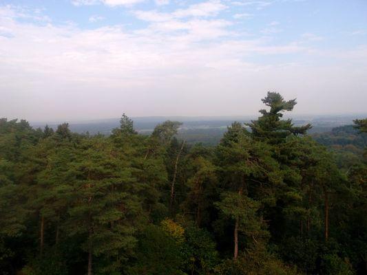 Aussicht vom Rennberg Feuerwachturm im Herbst