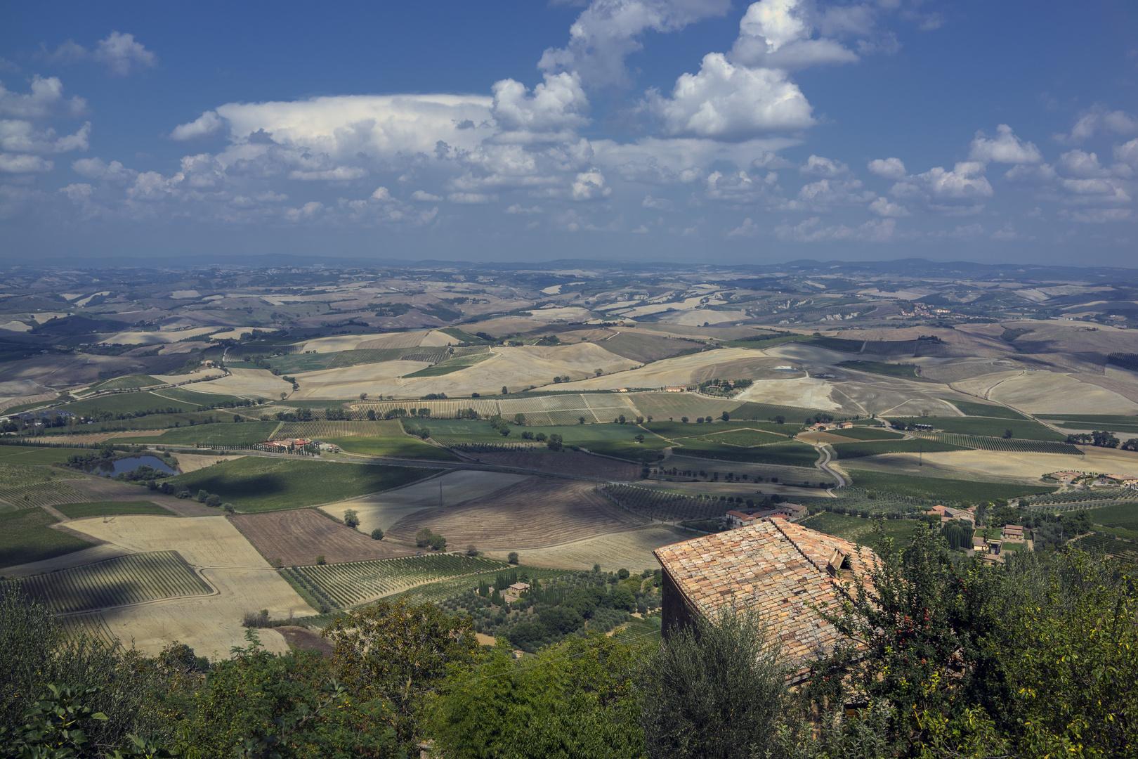 Aussicht von Montalcino