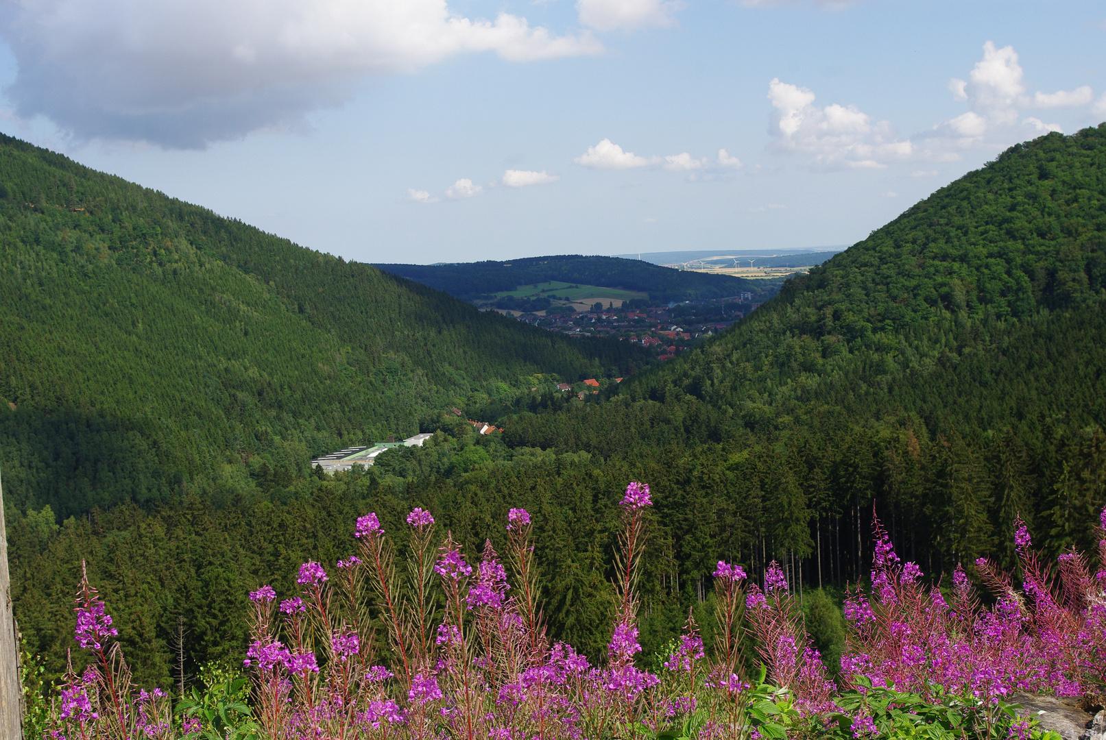 Aussichten im Harz...