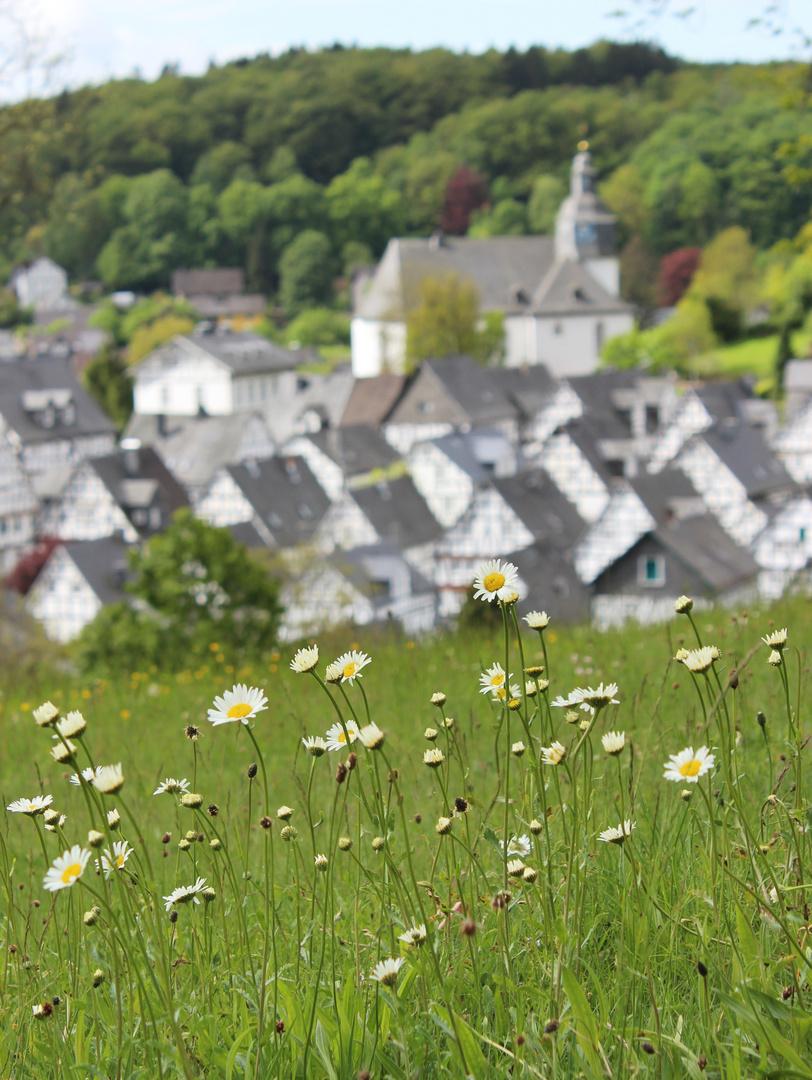 Aussichtspunkt Freudenberg
