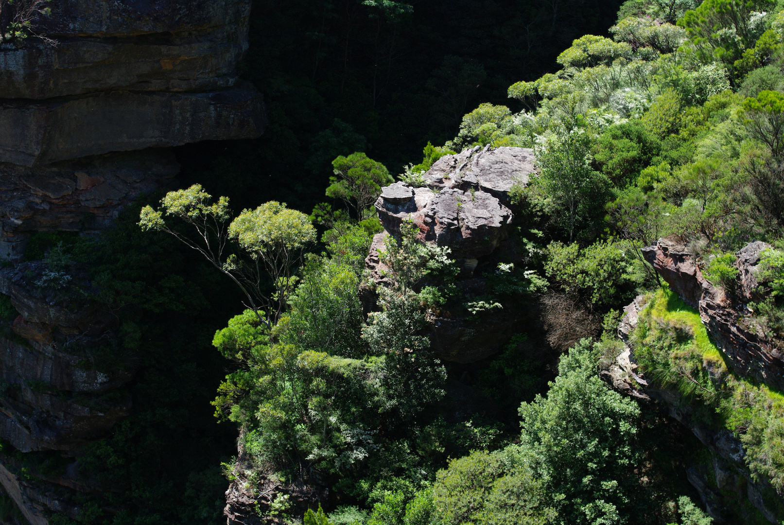 Australie 5 : Blue mountains