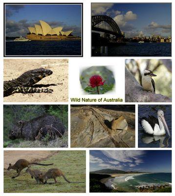 Australien - Impressionen