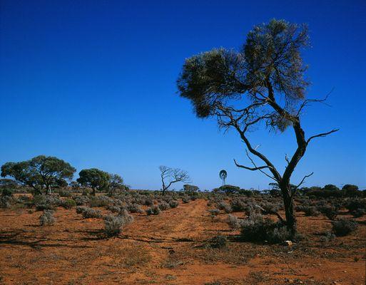 Australien (Outback)