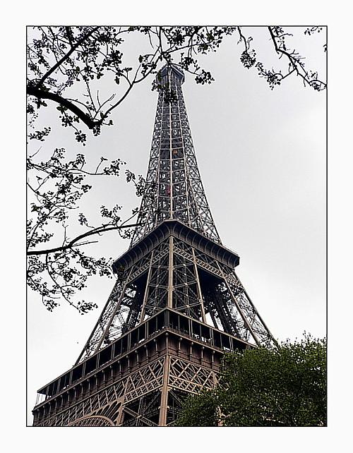 Austrieb in Paris