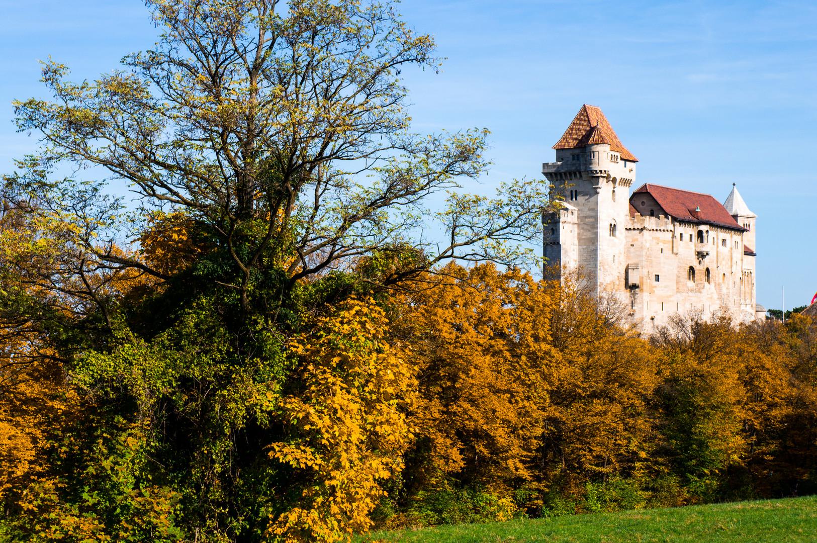 (AUT) Burg Lichtenstein