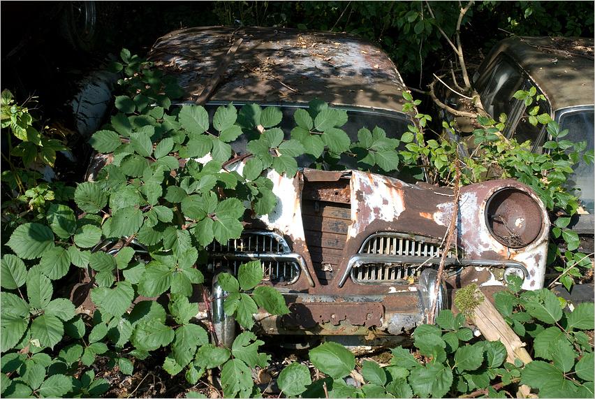Autofriedhof 7