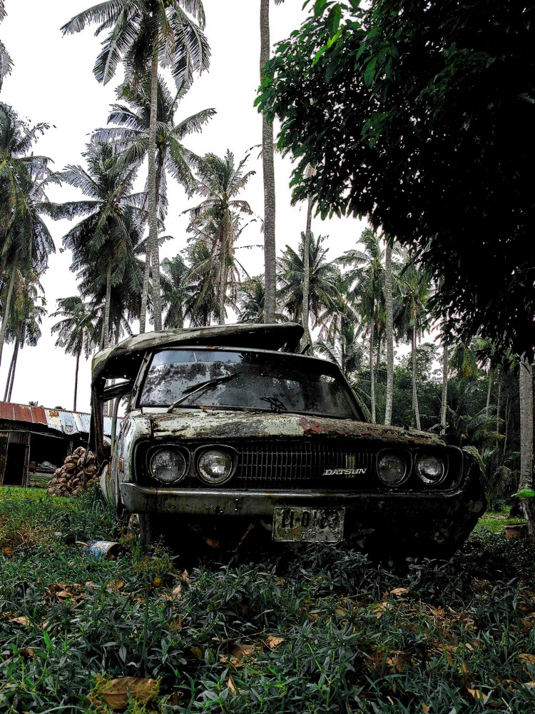 (Auto)Friedhof unter Palmen