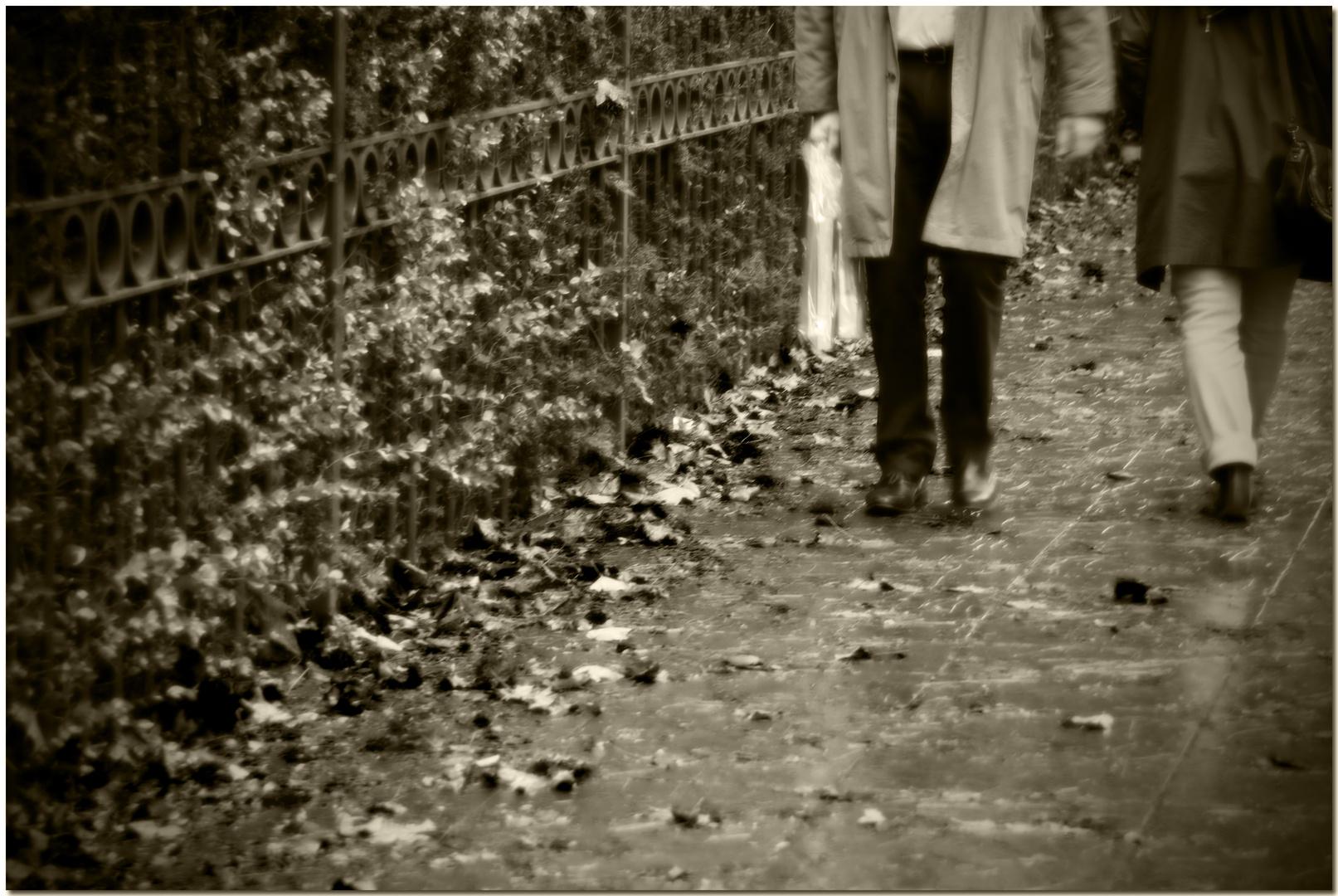 Automne à Bruxelles I Les feuilles mortes