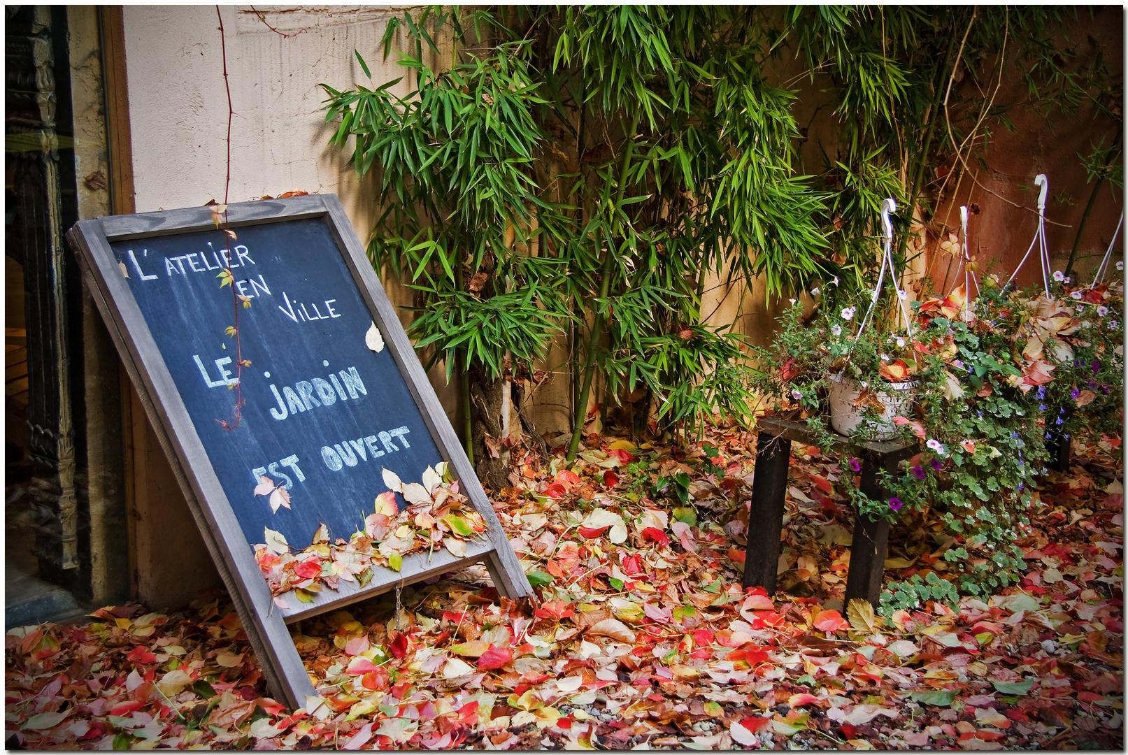 Automne à Bruxelles IV Le jardin est ouvert