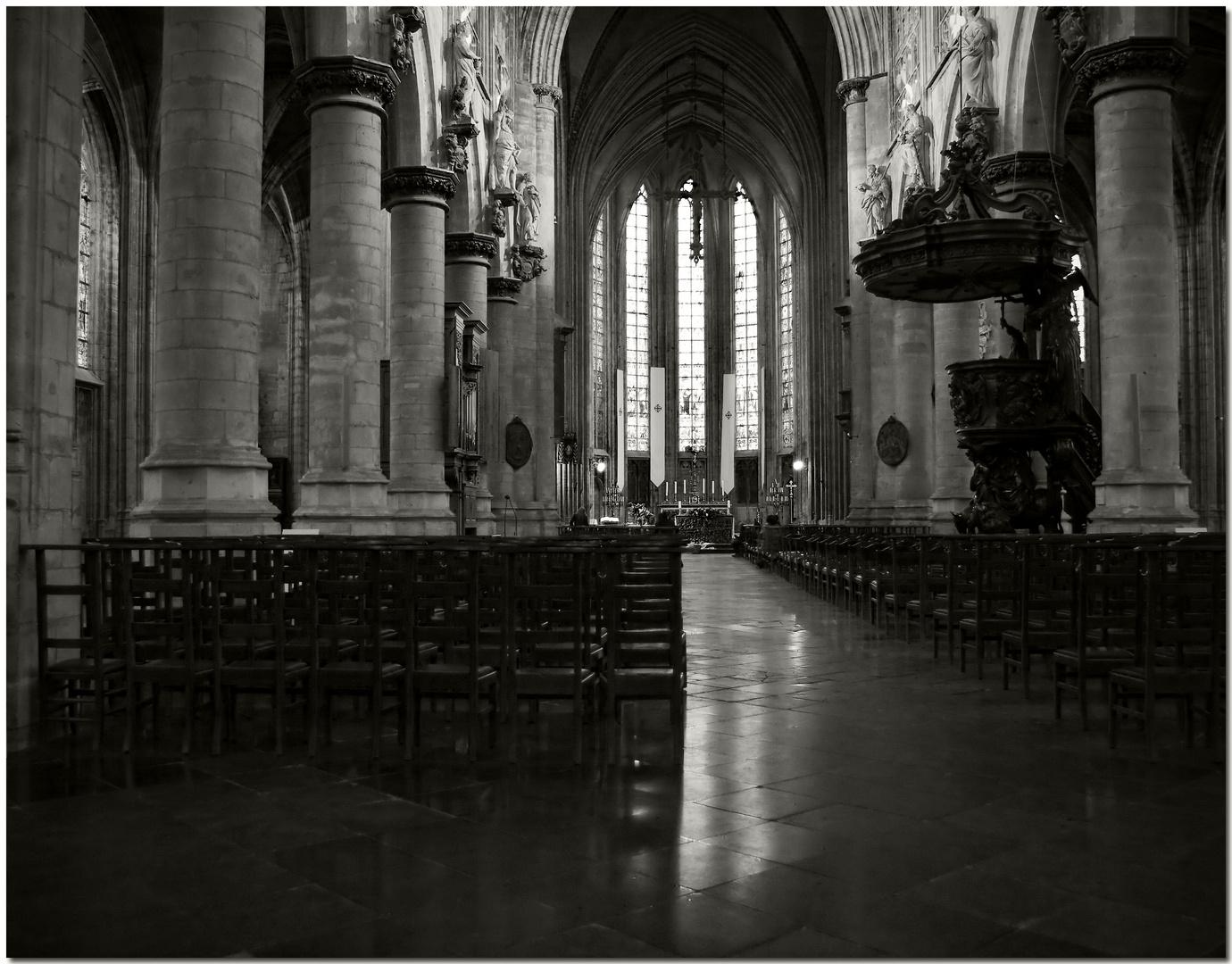 Automne à Bruxelles XXI Lumière et silence