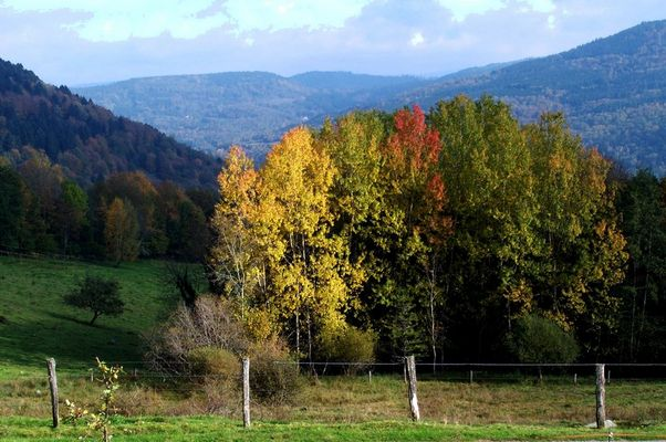 automne à lépange