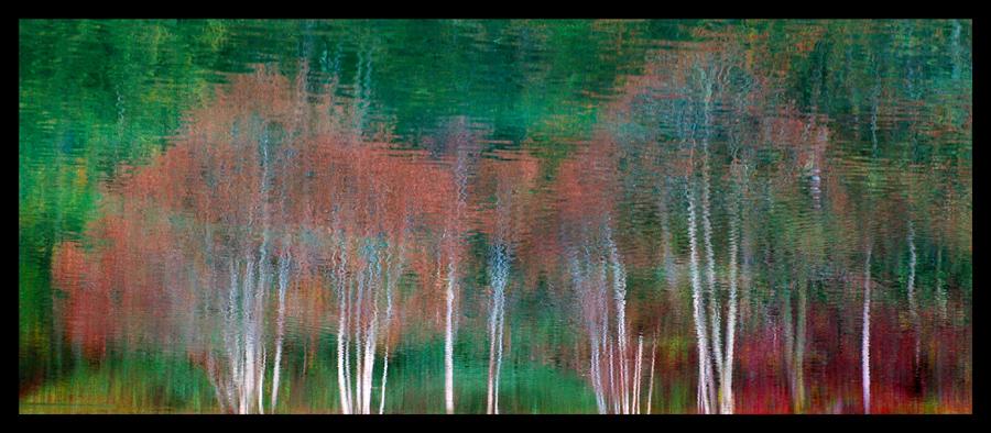 Automne abstrait