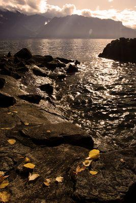 Automne au bord du Lac Léman