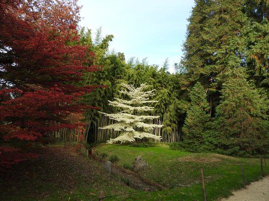 automne dans le gard