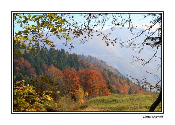 automne Jurassien