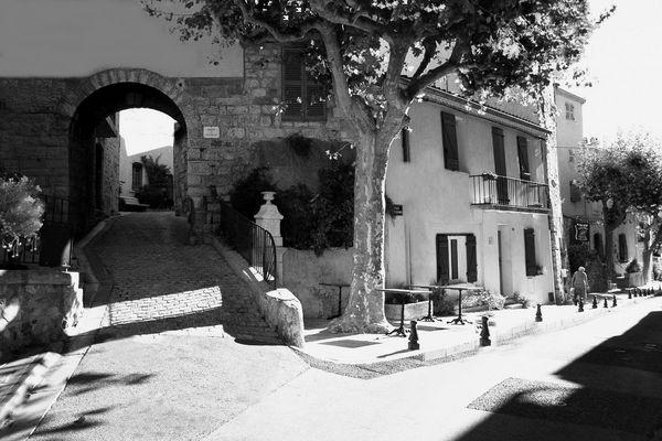 Automne Provençal