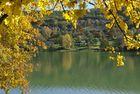 Automne sur le lac
