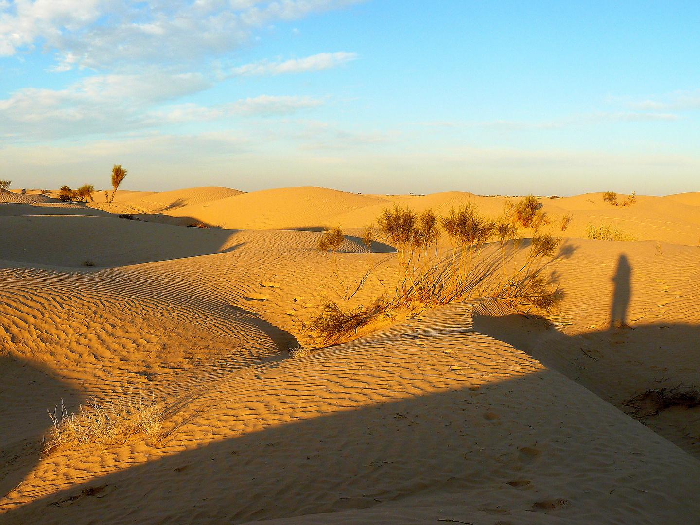 autoportrait au désert
