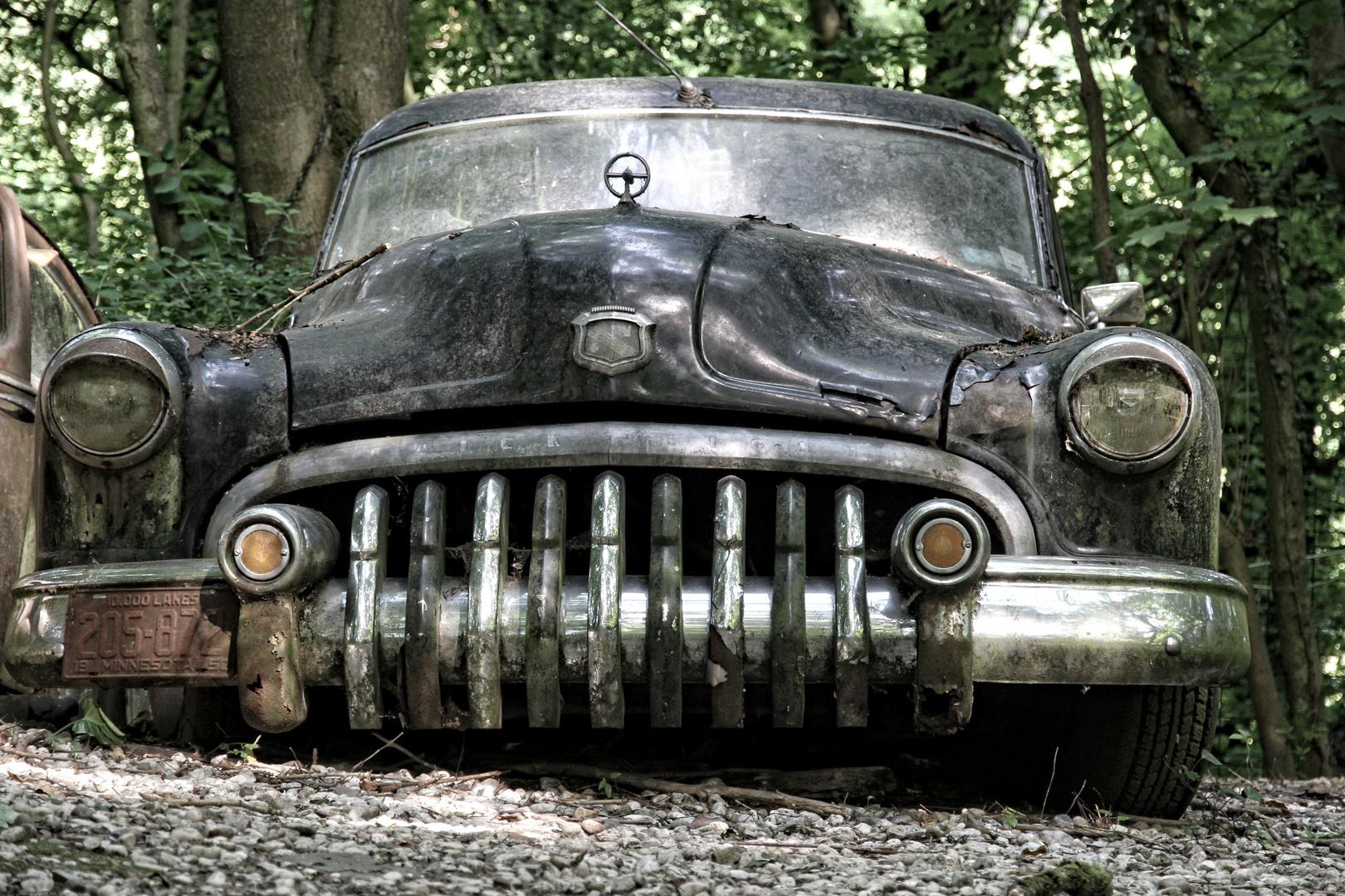 Autoskulpturenpark Neandertal - Buick II