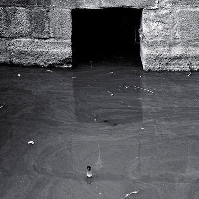 Autour des murs 1