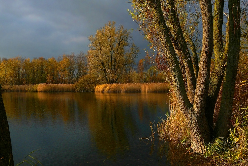 Autumn at the lake (1)