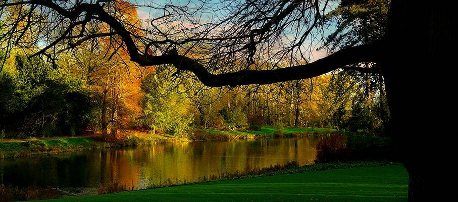 Autumn at the lake (11)