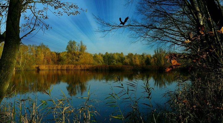 Autumn at the lake (7)