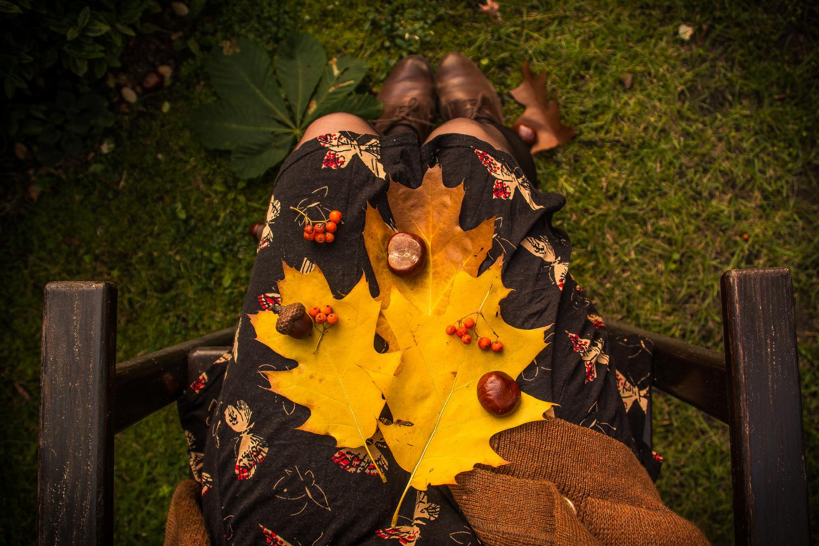 autumn autumn autumn