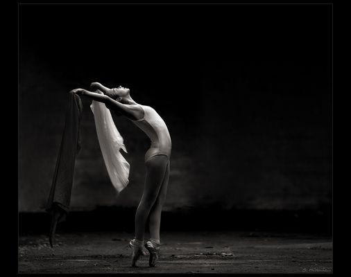 - autumn dancer II -