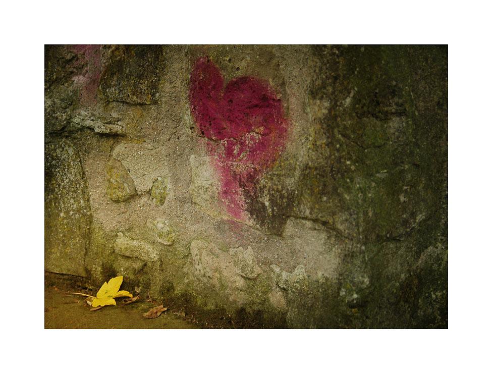 _autumn in love_
